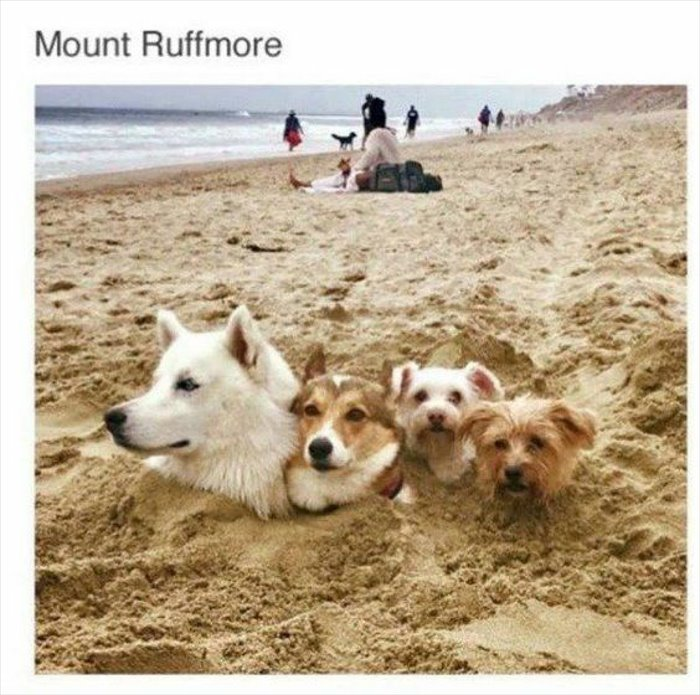 mount-ruffmore5796