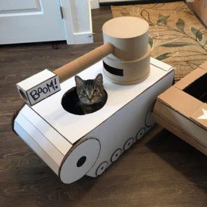 tank-cat1